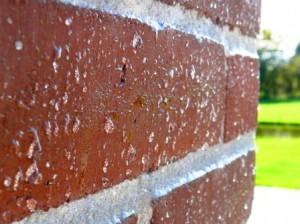 Защита стен от влаги